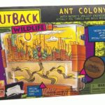 Ant-Colony-Outback-Wildlife-0
