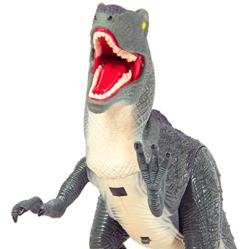 Dino-Planet-Remote-Control-Velociraptor-RC-Walking-Dinosaur-Toy-with-Shaking-Head-Light-Up-Eyes-and-Sounds-0-0