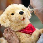 Joy-for-All-Companion-Pet-Golden-Pup-0-1