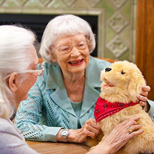 Joy-for-All-Companion-Pet-Golden-Pup-0-2
