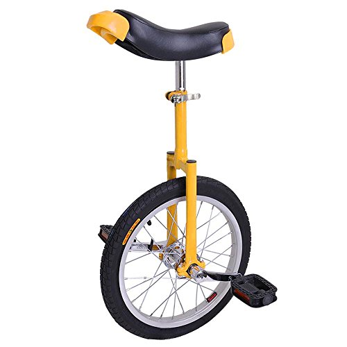 New-Deluxe-16-Inch-Unicycle-Uni-cycle-Unicycles-Wheel-Cycling-Chrome-0