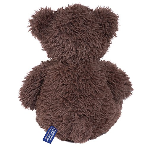 Vermont-Teddy-Bear-Oh-So-Soft-Kitty-Cat-18-inches-0-1