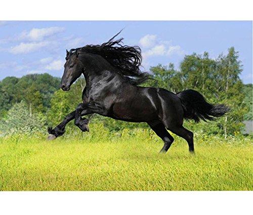 Wooden-Puzzles-Black-Horse-Pattern-1000-Piece-0